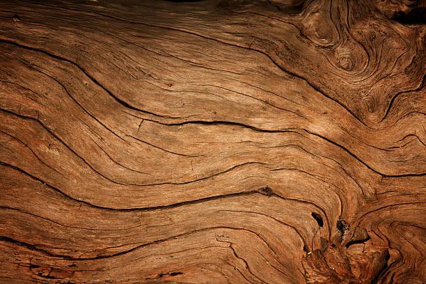 오래된 나무 배경기술 - 목재 재료 뉴스 사진 이미지