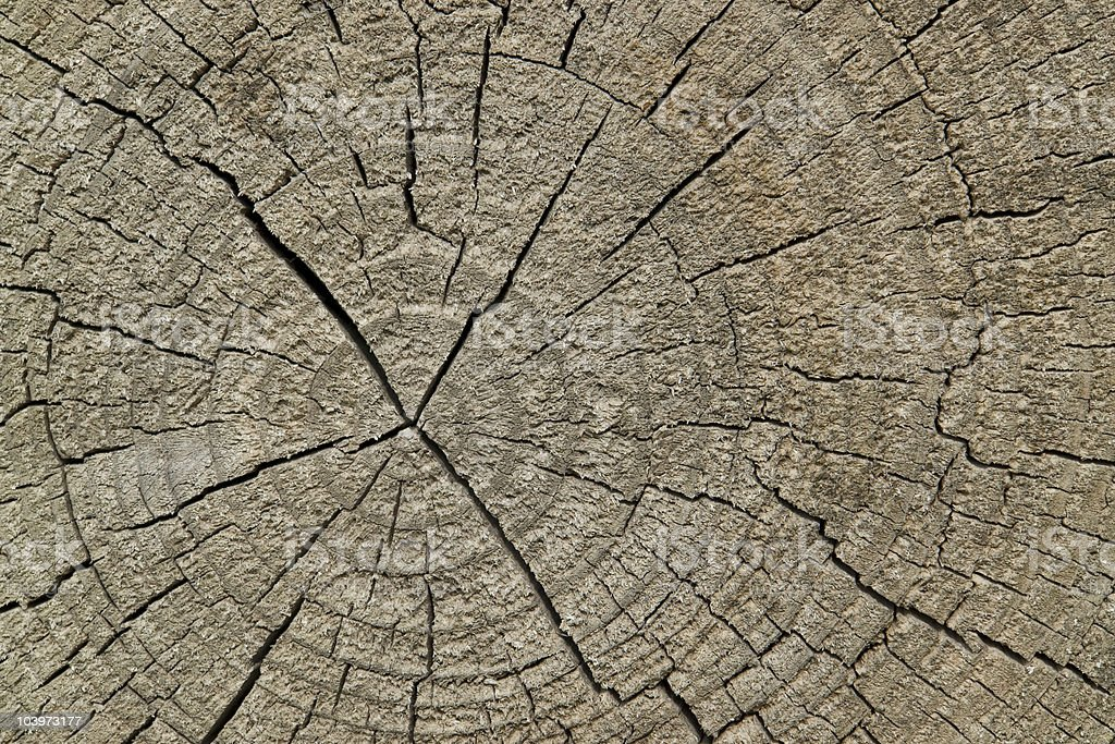 old wood detail royalty-free stock photo