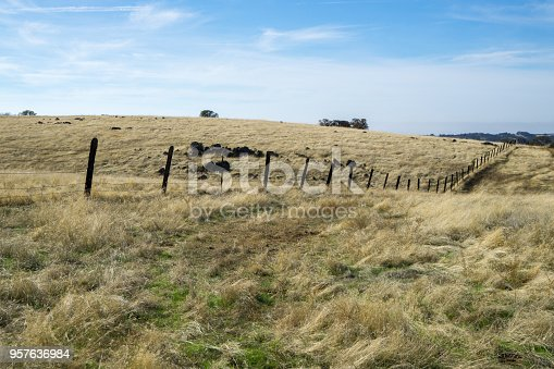 old wood fence cattle pasture
