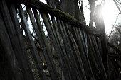 istock old wood fence 944567076