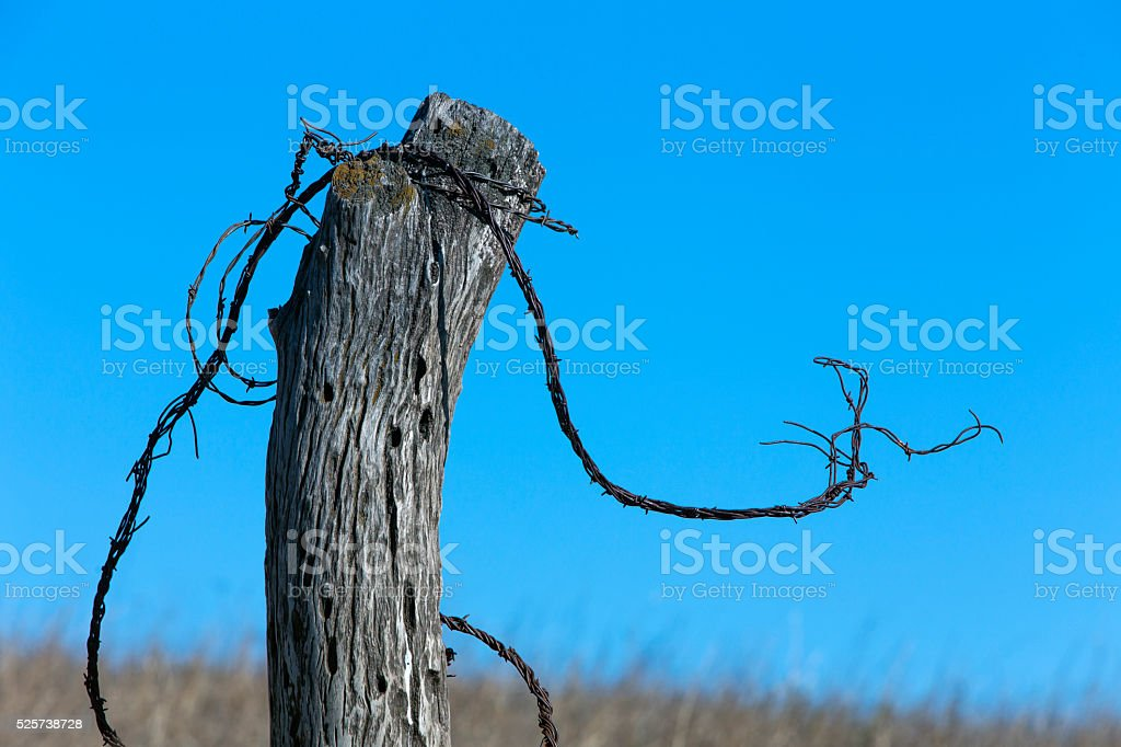 Old Wood Fence Post With Barbed Wire Stock Photo & More Pictures of ...