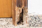 istock old wood 1151153286