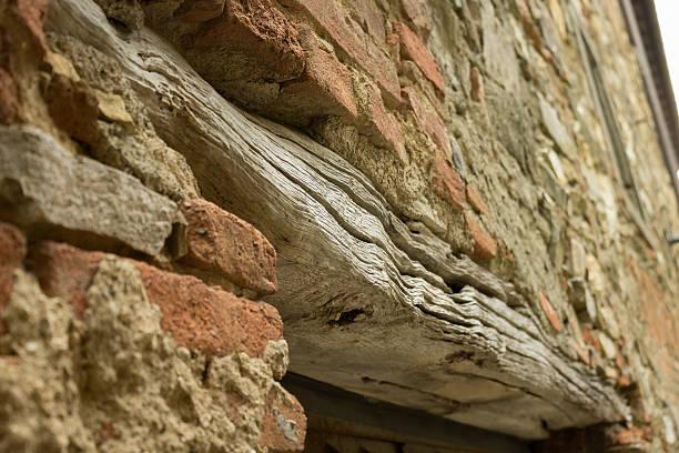 Alte Holz – Foto