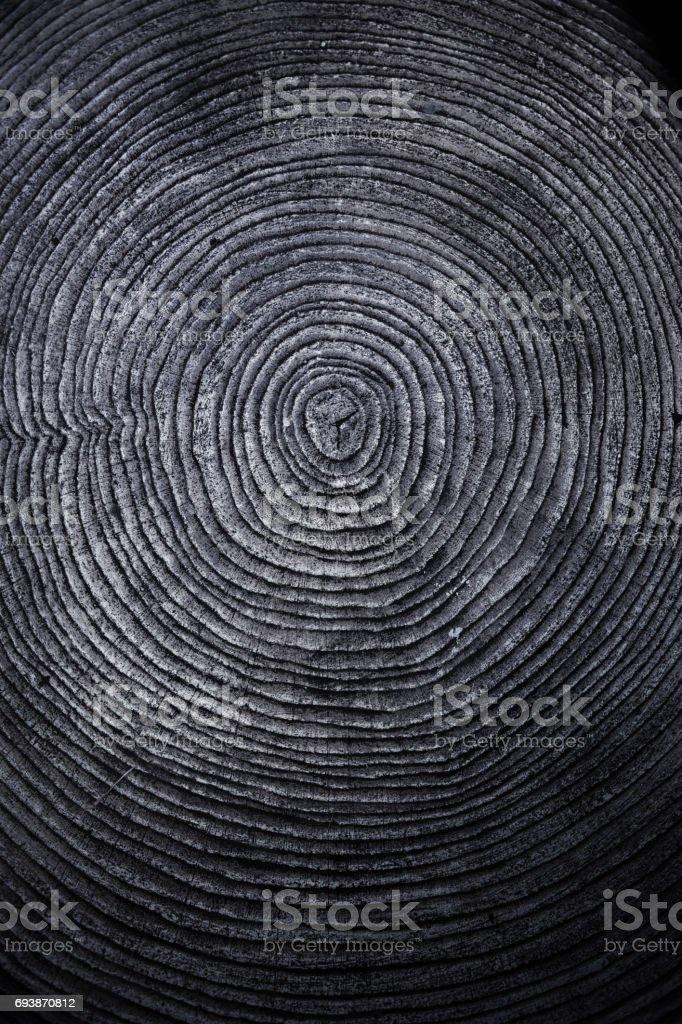 Vieja textura de madera anillo - foto de stock