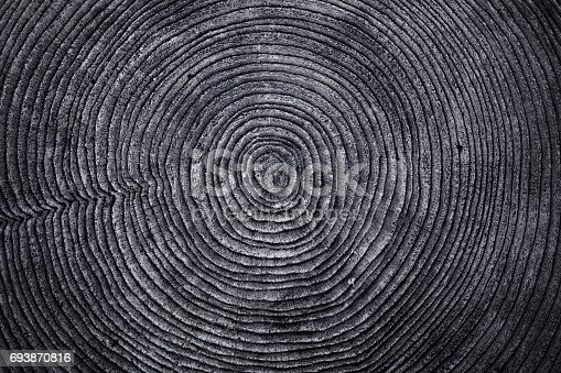 istock Old Wood ring texture 693870816
