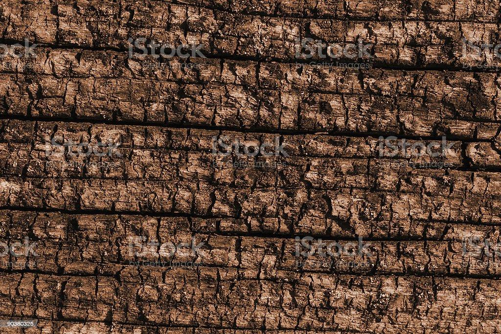 Old Wood Sepia Background Shot stock photo