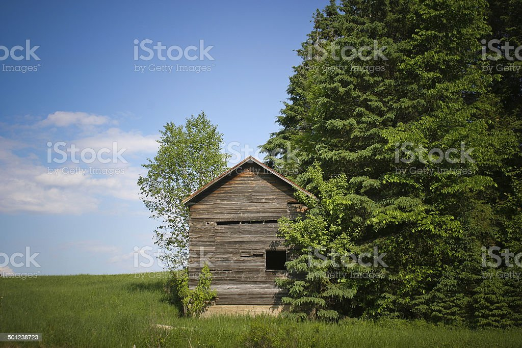 Old Wood Small Cabin besides green trees stock photo