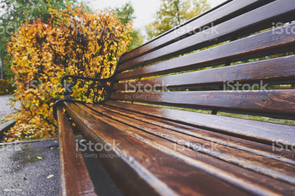 Old wooden bench in the park in autumn. Vintage autumn background. royalty-free stock photo