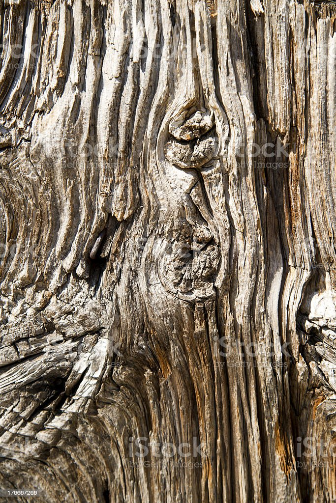 Old Wooden Board royalty-free stock photo