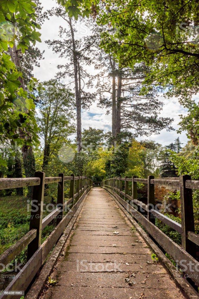 Old wooden bridge. Natural vintage background royalty-free stock photo