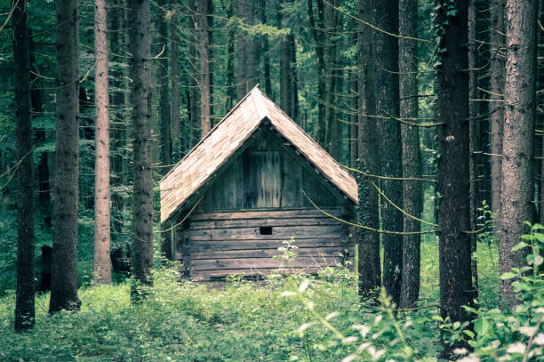 Old wooden Cabin - Stock image stock photo