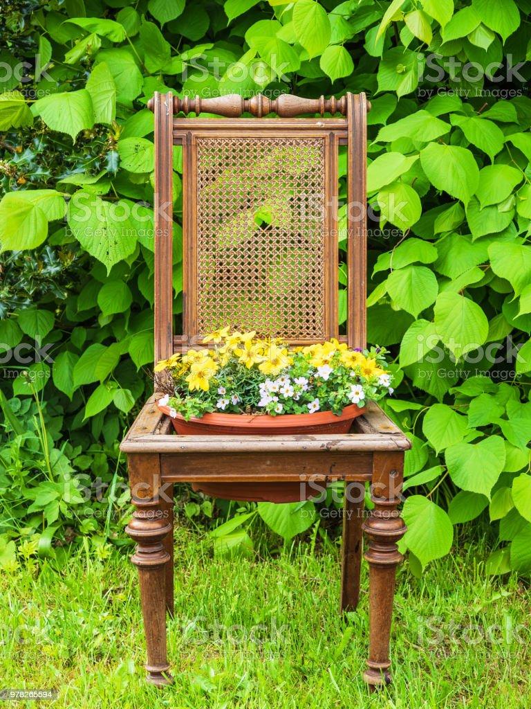 Alten Holzstuhl mit Blumentopf in einem Garten – Foto