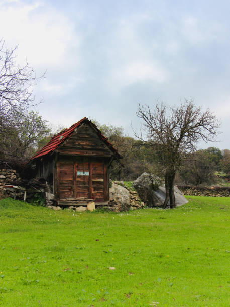 old wooden cottage stock photo
