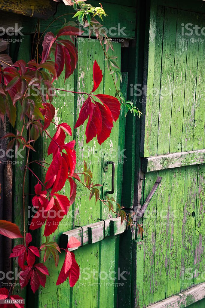 Old wooden door Old door 2015 Stock Photo