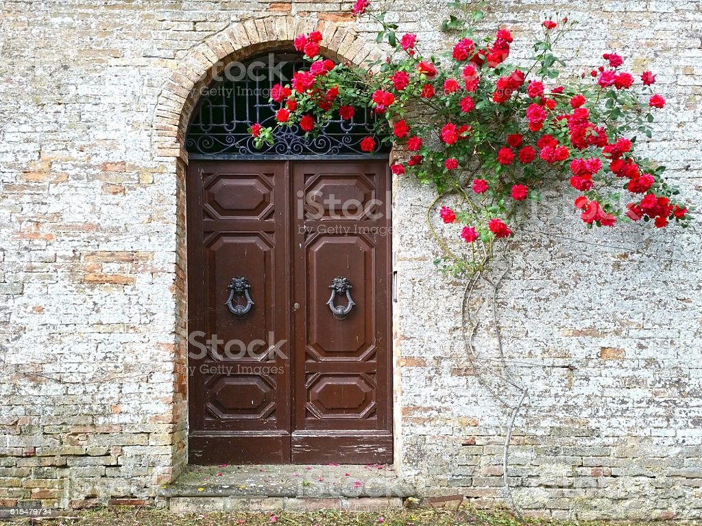Old wooden door with red blooming roses – Foto