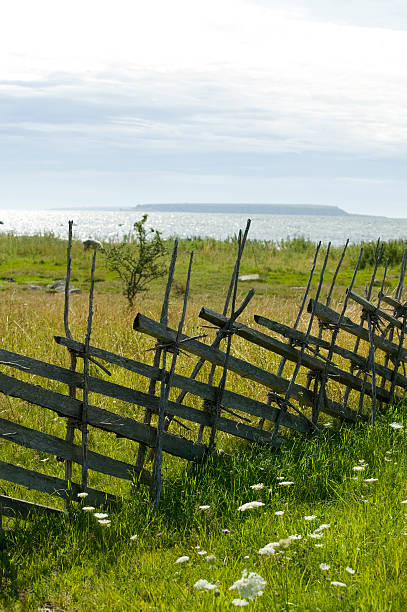 Alte Holz-Zaun auf einem Gras Feld – Foto