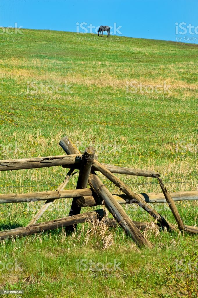 Old wooden fence and horse pasture stock photo