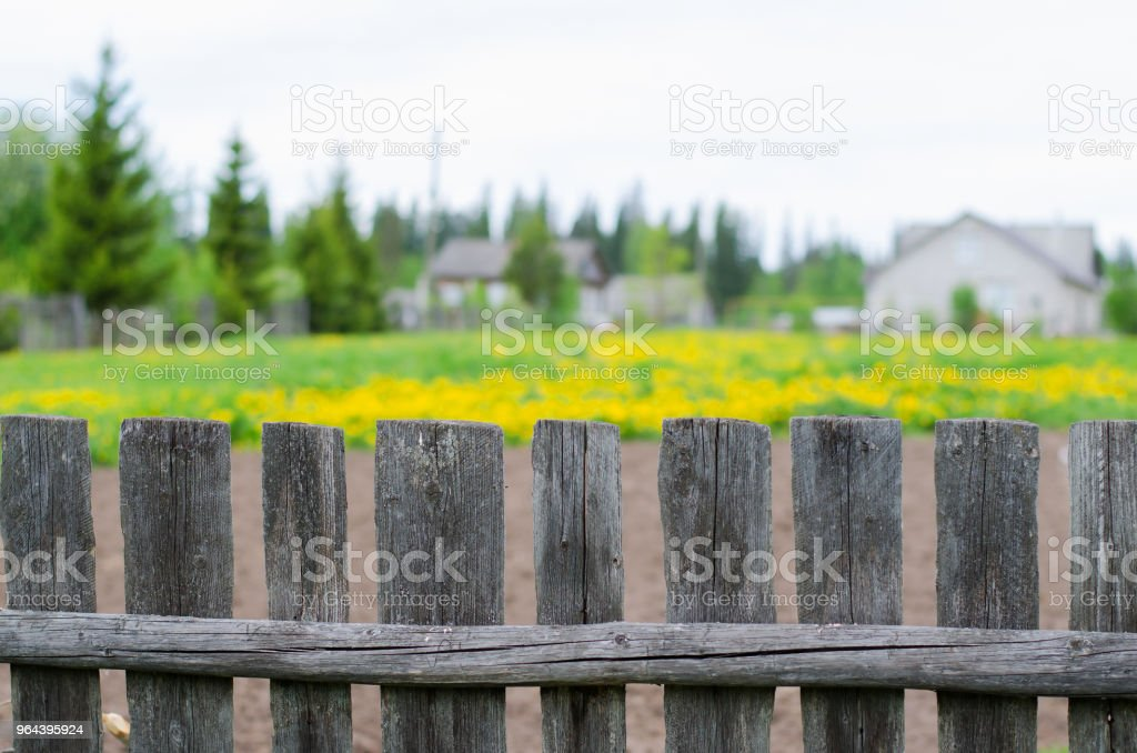 Oude houten hek. Achtergrond-gele bloemen, dorpshuis. - Royalty-free Achtergrond - Thema Stockfoto