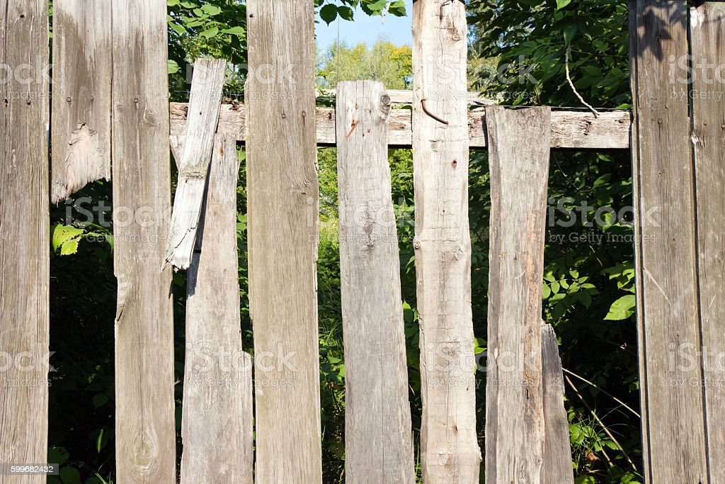 Old wooden fence grey color. Through the large cracks visible stock photo