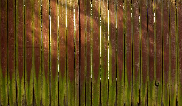 Alten hölzernen Zaun – Foto