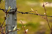 istock Old Wooden Fence Post 1057784634