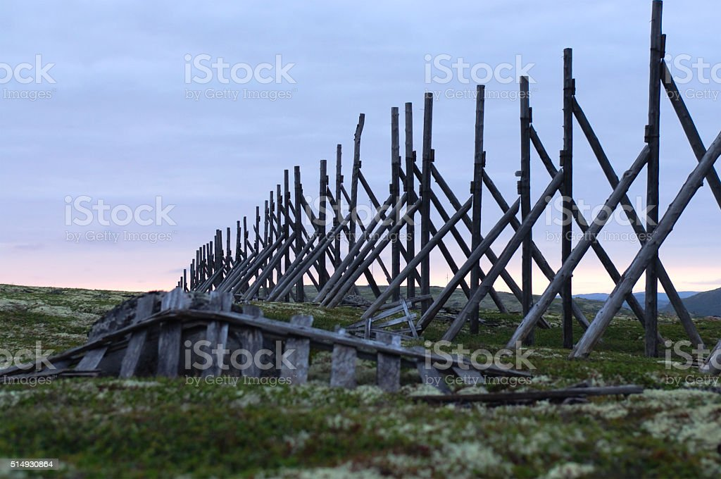 Old wooden fence posts on snow delay in the Kola peninsula.