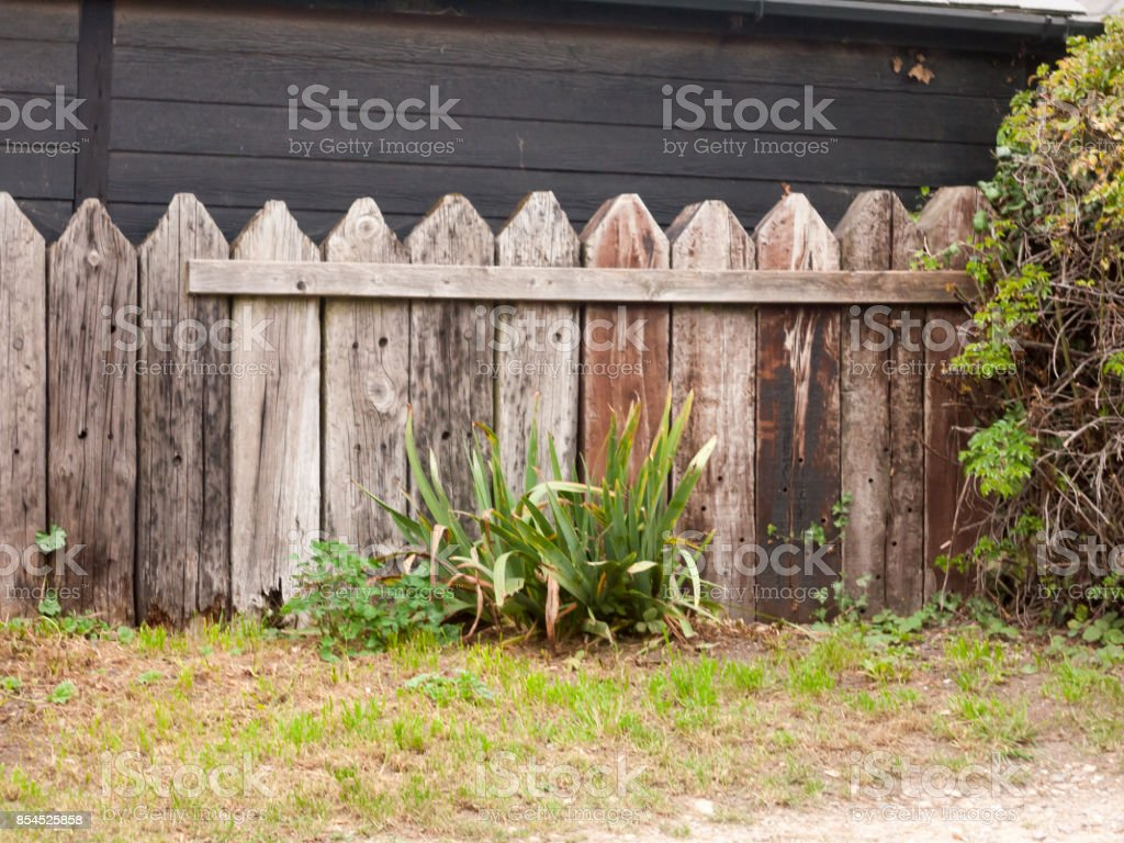 Alten Holzzaun Wand Garten Garten Pflanzen Rasen Darauf Hingewiesen