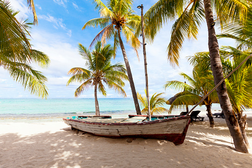 Old wooden fishing boat on a tropical paradise island with coconut palm trees  in the background