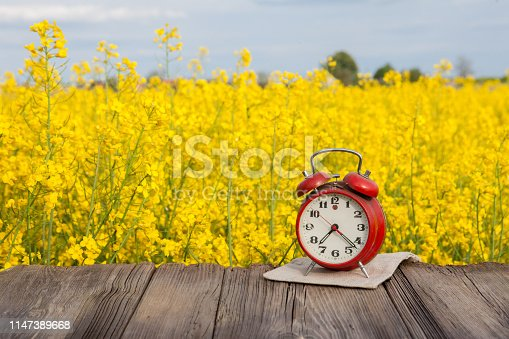 old wooden floor and in the background a field of yellow rape flowers and a red watch