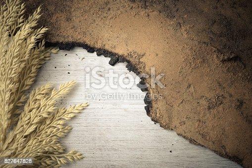 istock Old wooden floor background 827647828