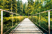 Wide angle color image depicting the diminishing perspective of an old wooden footbridge leading into wild dense forest in the Carpathian mountains of Romania.