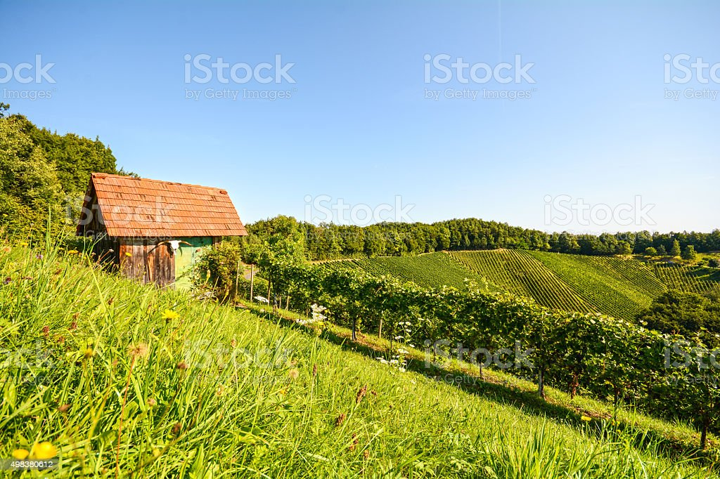 Old wooden hut in the vineyards, Southern Styria, Austria Europe stock photo