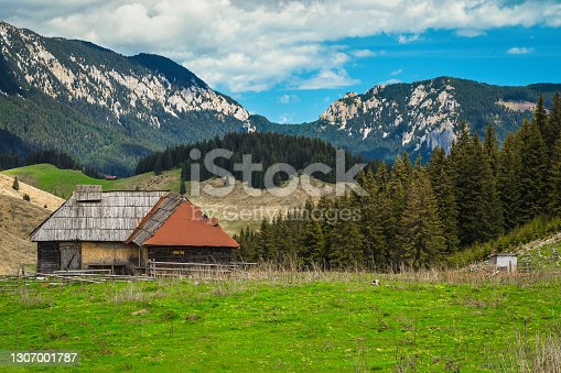 istock Old wooden hut on the forest glade, Transylvania, Romania 1307001787