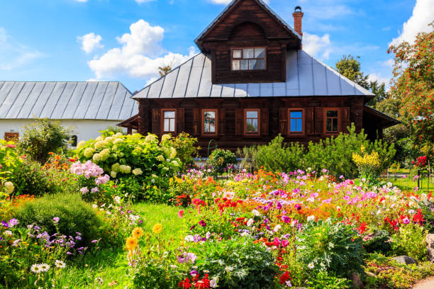 Old wooden log house in a russian village Old wooden log house in a russian village russian dacha stock pictures, royalty-free photos & images