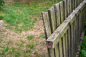 istock Old wooden mossy fence 1223245921