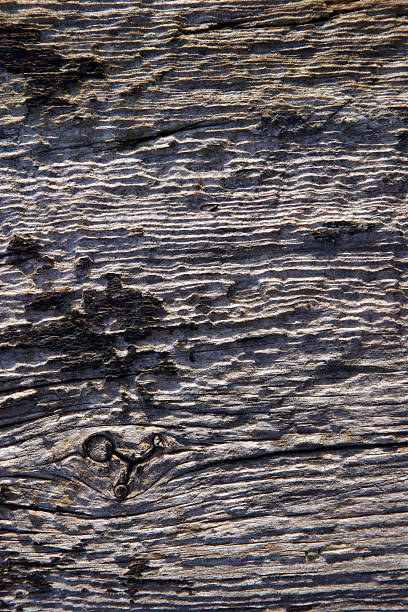 Old wooden plank stock photo