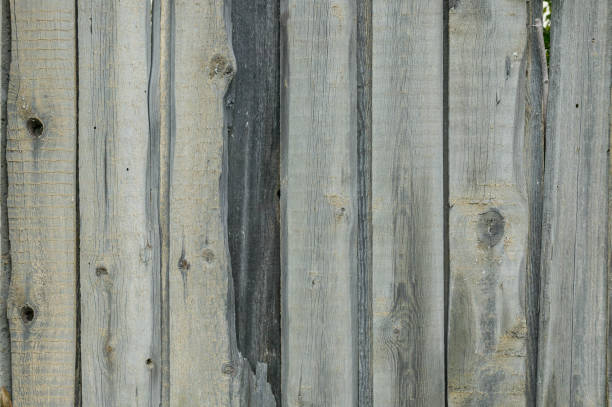 alte holzbretter textur. vertikal ausgerichtete textur - stockwerke des waldes stock-fotos und bilder