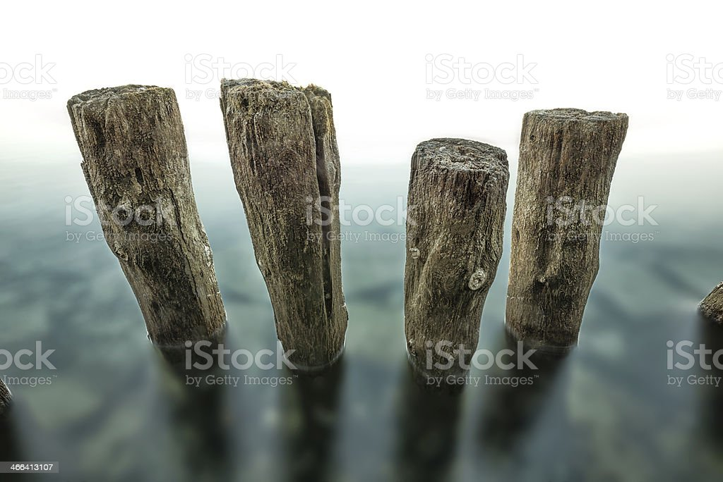 old wooden post standing in water stock photo