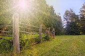 istock Old wooden rural corral fence among trees in sunlight 1018987622