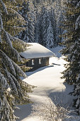 Romantic wooden ski cabin covered by snow and hidden behind trees near Hauchenberg, Diepolz. Allgäu, Bavaria, Germany.