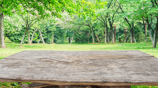 Old wooden table with spring green garden background