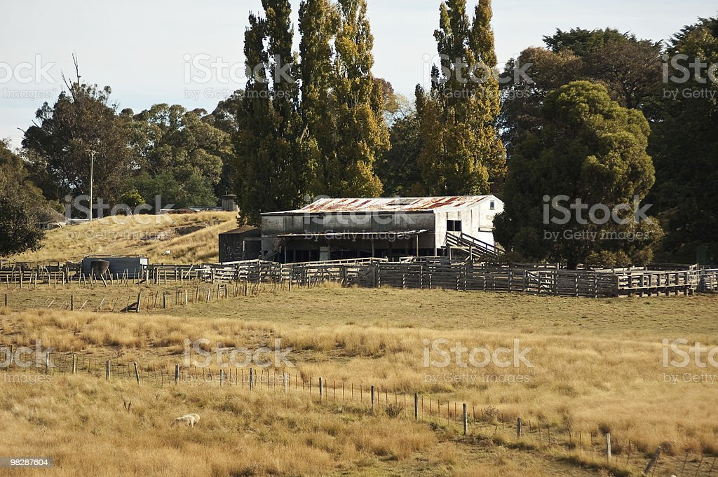 Old Woolshed and Stock Yards royalty-free stock photo