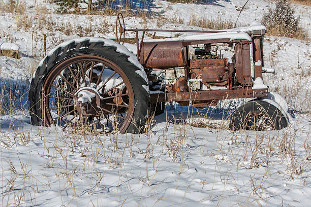 Old Workhorse (2) stock photo