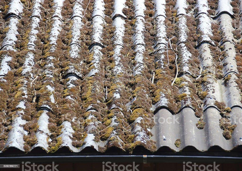 Antigos desgastado cortina eternit teto com alga - foto de acervo