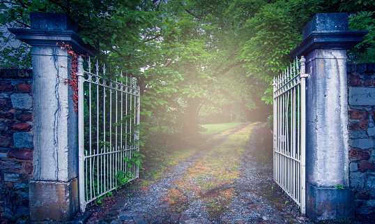 Old wrought iron gate at mysterious garden path.