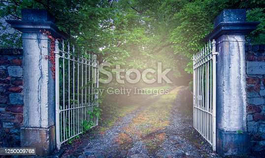 An open white metal gate with stone pillars at the entrance of a driveway of a green natural environment with a deciduous forest on a dark, misty and mysterious day