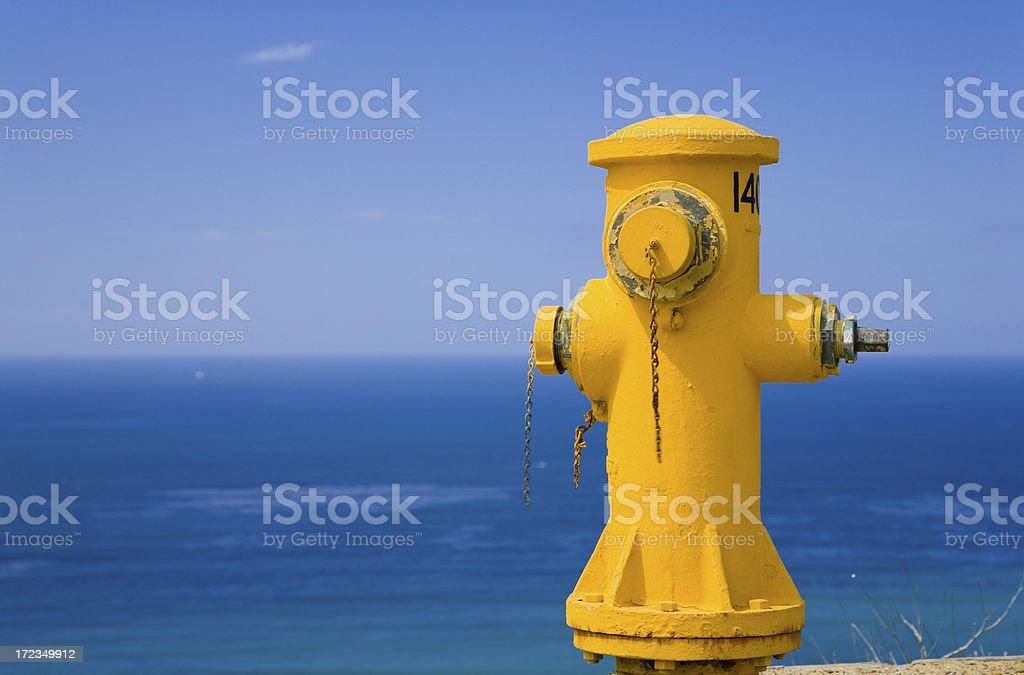 Old Yeller Firehydrant royalty-free stock photo