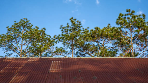 Old zinc roof There. stock photo