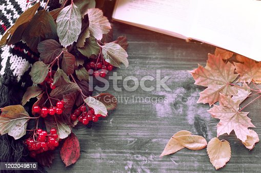 1057183432 istock photo oldbook lies on a warm gray table with a bookmark of autumn leaf, lying next to a warm cozy white scarf