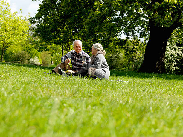 Older couple drinking wine at picnic stock photo